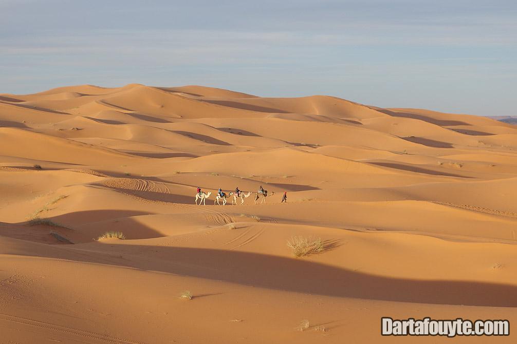 Photos, Camel Rides Morocco