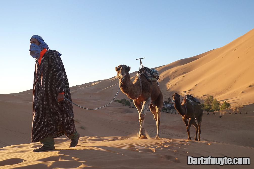 Photos, Camel Trekking Merzouga